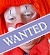 Link to Wanted - View all wanted adverts placed by individuals looking to purchase a specific sort or type of entertainment business.
