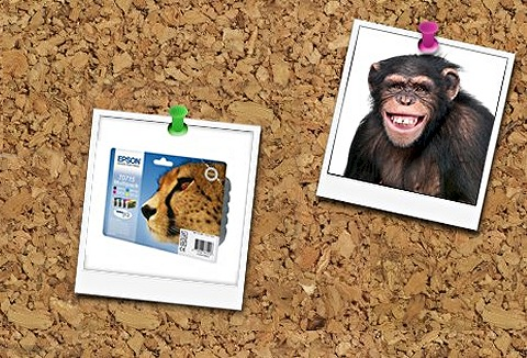 Link to the Cartridge Monkey website