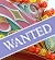 Link to Wanted or Stolen - View all wanted adverts placed by individuals looking to purchase a specific  item or single type of amusement ride.